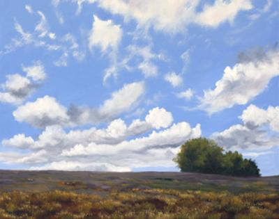 Big Sky by Julie Peterson