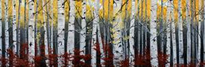 Birch Forest by Julie Peterson