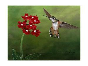 Hummer and Red Flowers by Julie Peterson