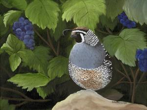 Quail Grapes by Julie Peterson