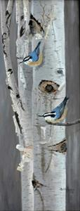 Red Breasted Nuthatch by Julie Peterson