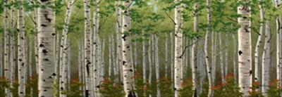 Summer Birch Forest by Julie Peterson