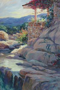 Chico's Overloo by Julie Pollard