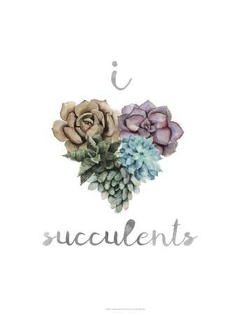 Succulent Life II by Julie Silver