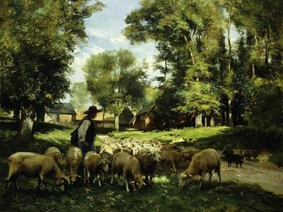 A Shepherd and His Flock