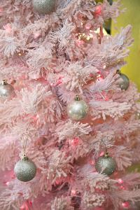 Pink Frosted Christmas Tree, Palm Springs, California, USA by Julien McRoberts