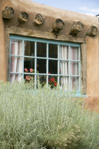 Sagebrush Outside an Adobe Building Window, Taos, New Mexico, USA by Julien McRoberts