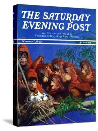 """Orangutans & Bird Nest,"" Saturday Evening Post Cover, February 17, 1940"