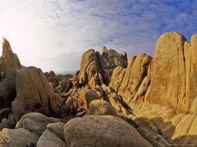 Jumbled Rocks, Joshua Tree National Park, California, USA-Chuck Haney-Photographic Print