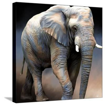 Jumbo-Paul Miners-Stretched Canvas Print