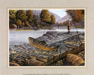 Jumping Trout--Art Print