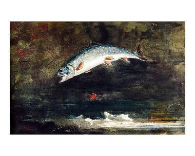 Jumping Trout-Winslow Homer-Giclee Print