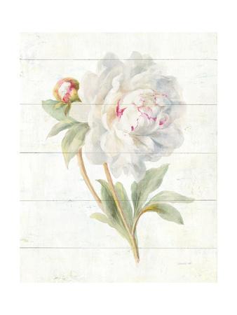 https://imgc.artprintimages.com/img/print/june-blooms-ii_u-l-q1bd6kp0.jpg?p=0