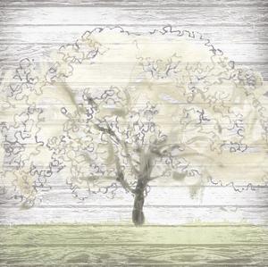 Barn Tree II by June Erica Vess