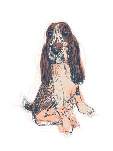 Dog Portrait--Ajax by June Erica Vess