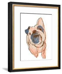 Dog Portrait--Bobo by June Erica Vess