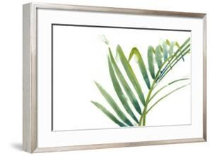 Palm Wonderful VI by June Erica Vess