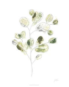Sea Greens I by June Erica Vess