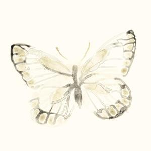 Sepia Butterfly Impressions I by June Erica Vess