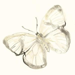 Sepia Butterfly Impressions III by June Erica Vess