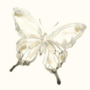 Sepia Butterfly Impressions IV by June Erica Vess