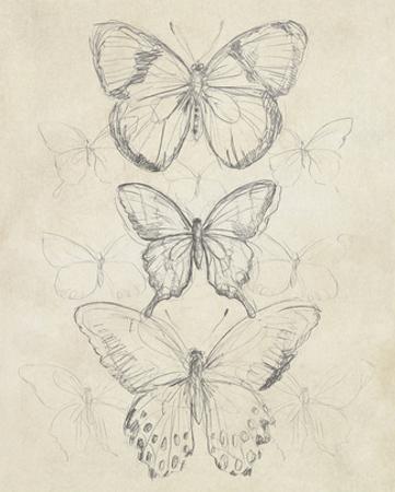 Vintage Butterfly Sketch I by June Erica Vess