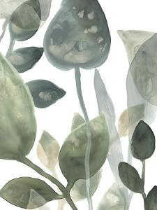 Water Leaves I by June Erica Vess
