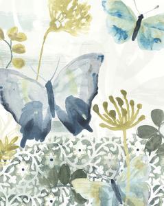 Butterfly Concerto II by June Vess