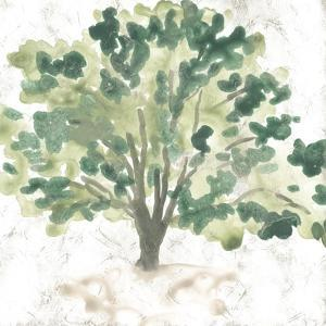 Country Tree I by June Vess