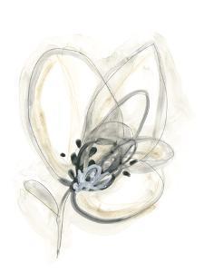 Monochrome Floral Study V by June Vess