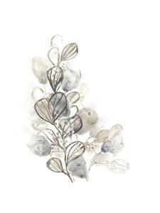 Neutral Botany II by June Vess