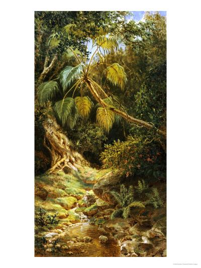 Jungala Cubana, 1880-Esteban Chartrand-Giclee Print
