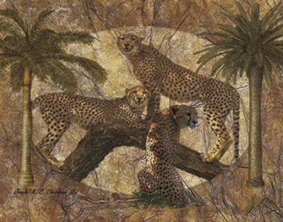 Jungle Cheetahs-Jonnie Chardonn-Art Print