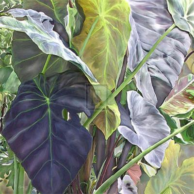 Jungle Fever I-Jan Sacca-Art Print
