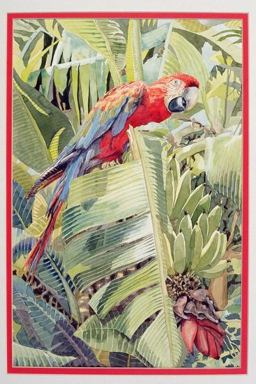 Jungle Parrot-Felicity House-Giclee Print