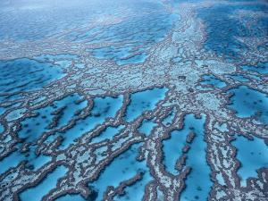 Aerial View of Great Barrier Reef, Queensland, Australia by Jurgen Freund