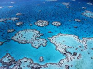 Aerial View of Hardy Reef, Great Barrier Reef and Sea, Queensland, Australia by Jurgen Freund