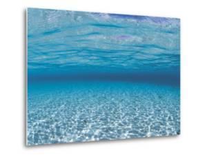 Sandy Seabed Underwater View, Indo-Pacific by Jurgen Freund