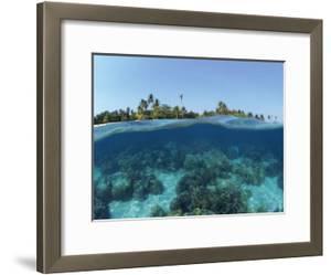 Split-Level Shot of Coral Reef and Shore, Phillippines by Jurgen Freund