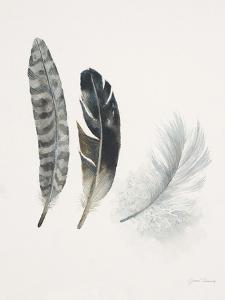 Field Study Feather Trio by Jurgen Gottschlag