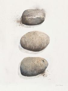 Field Study Stone by Jurgen Gottschlag