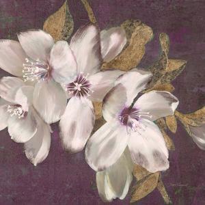 Plum Blossoms II by Jurgen Gottschlag