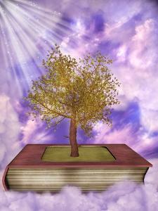 Magic Book by justdd