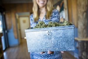 Marijuana Flower At Oregon Coast Cannabis, A Marijuana Dispensary In Manzanita, Oregon by Justin Bailie