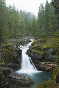 Silver Falls On The Ohanapecosh River In Mt. Rainier National Park, WA by Justin Bailie