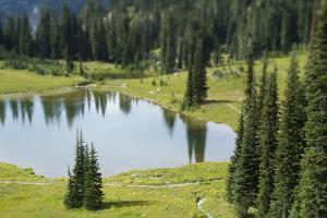 Tipsoo Lake. Mt. Rainier National Park, WA by Justin Bailie