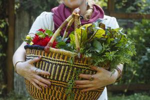 Young Woman Holding Fresh Vegetables Out Of The Garden by Justin Bailie