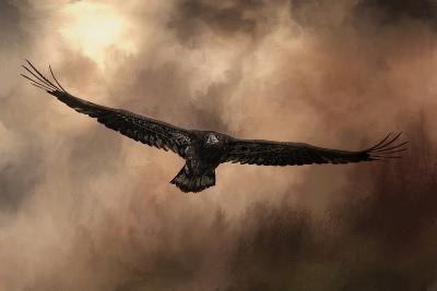 Juvenile Bald Eagle in the Sepia Sky-Jai Johnson-Giclee Print