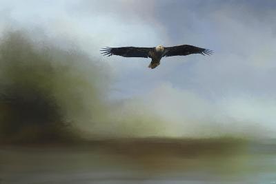Juvenile Eagle at the Lake-Jai Johnson-Giclee Print