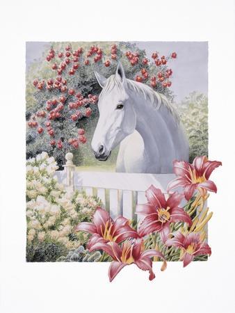 Garden Pony